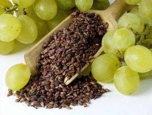 üzüm çekirdeği yağı, üzüm çekirdeği yağı nedir